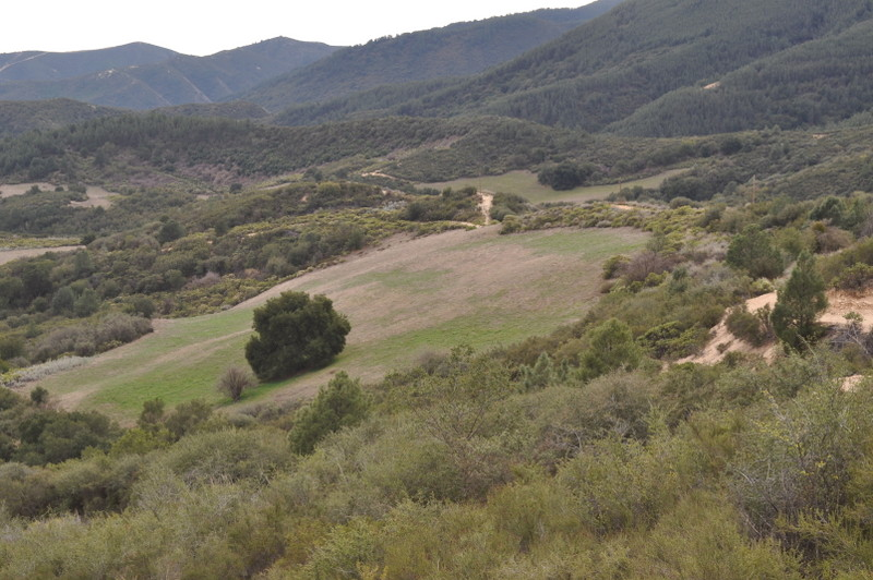Scholinc Ranch – Land for Sale Monterey County, CA