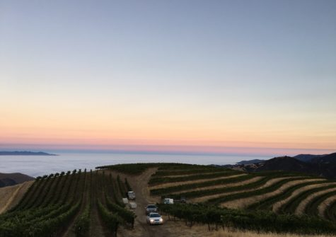 Coast View Vineyard and Ranch – Land for Sale Monterey County, California