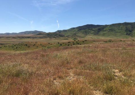 Ortiz Ranch Panoche CA – San Benito County