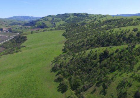 Bayly Ranch Potential Vineyard Property
