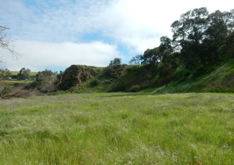 Gorgeous Parcel to Build a Home in San Benito County