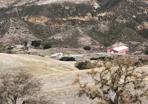 Dimitrius Ranch – Cattle, Hunting, and Recreational Ranch