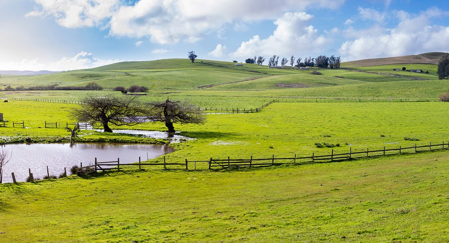 7 Reasons To Start A Farm (And How To Find Agriculture Land For Sale) In California