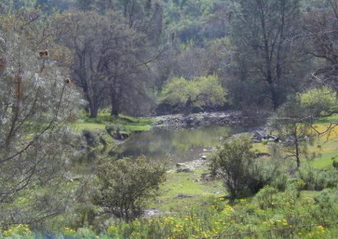 Oak Pine Ranch – Stanislaus County, CA