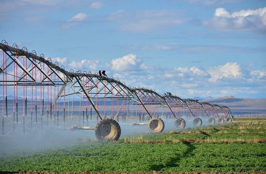 The Importance Of Water When Purchasing Farmland