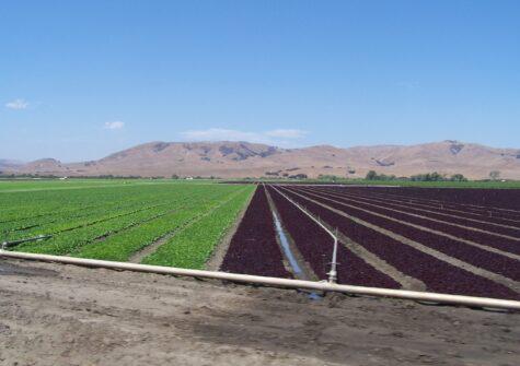 Breen 1 Ranch – San Juan Valley Farm Land