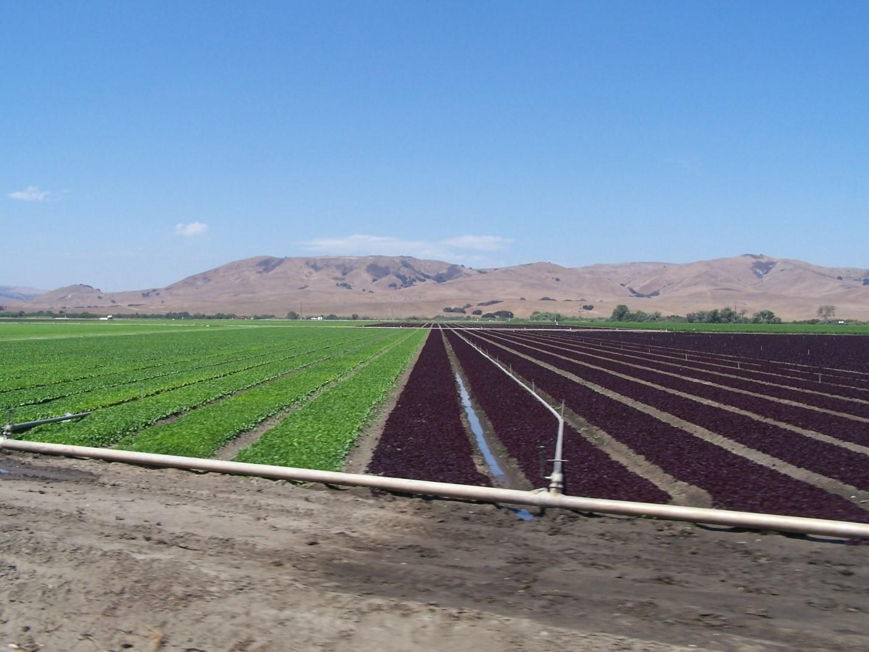 Farms For Sale California