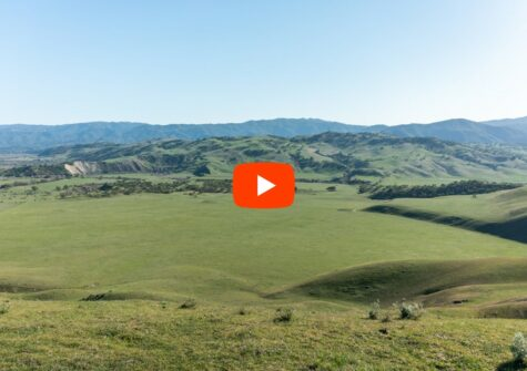 Windfield Ranch – Thomas Road Hollister, CA 95023 – San Benito County